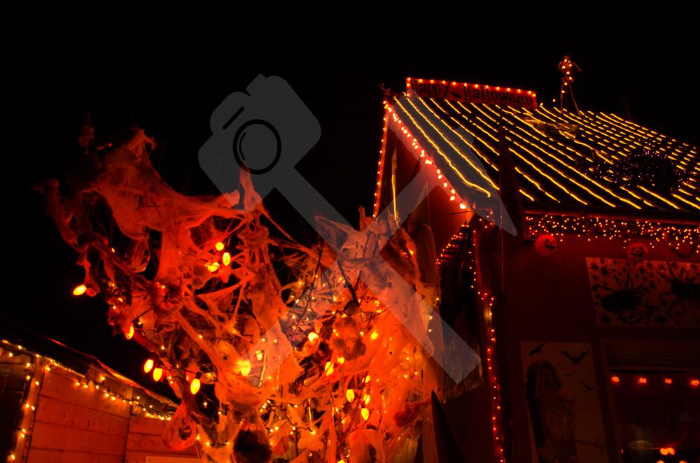 Halloweenhaus Herringen 5