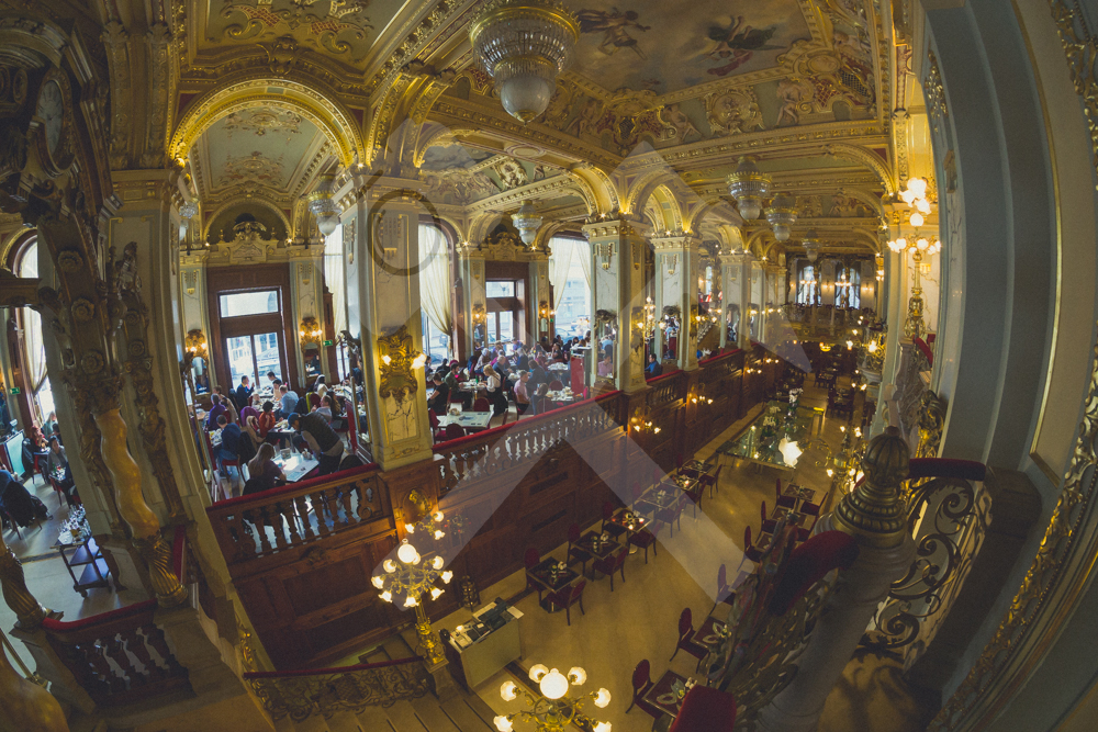 Cafe New York in Budapest